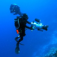 Underwater cinematographer George Evatt using a rebreather to film a fish feeding station at 25 meters/83 feet.