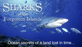 The Sharks of the Forgotten Islands Documentary